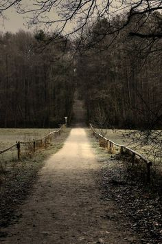 Nature S Path World Pantry