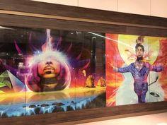 Photos on display @ Mall of America 2016