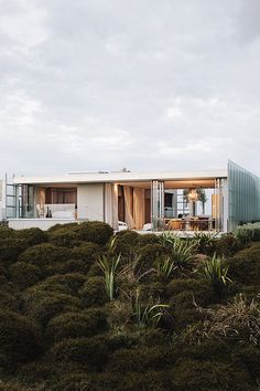 World Architecture Festival 2014: Building of the Year Award. Dune House, New Zealand, designed by Fearon Hay Architects Ltd, won the Completed Buildings - Villa award. The house is located on the east coast of New Zealand's North Island, an hour's drive north of Auckland. The site sits within a natural dune zone adjacent to a long white sand beach. The house is nested into the dunes - the lower level is almost completely hidden by its sunken integration into the landscape.