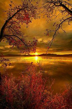 Desde la salida del sol hasta su ocaso,sea alabado el nombre del Señor. - Salmos 113:3   From sunrise to sunset,let the Lord's name be praised! - Psalm 113:3
