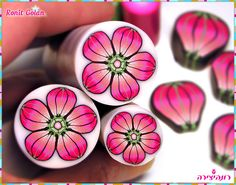 NewFlowerCane :)) by Ronit golan, via Flickr  I've done this! Amazing fun! Everyone should try this!