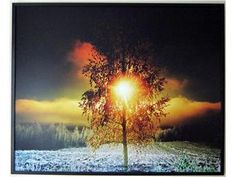 Photo by Jonas Linell Second Hand, Celestial, Sunset, Outdoor, Art, Auction, Outdoors, Art Background, Kunst