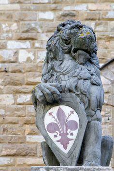 Firenze Italy Duomo Florence #TuscanyAgriturismoGiratola