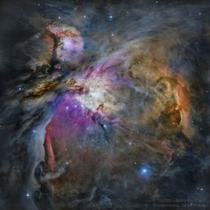 Polar Climate, Galaxy Photos, Nasa Photos, Astronomy Pictures, Space Photography, Planetary Science, O Gas, Orion Nebula, Explanation Writing