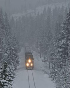Snow Train, Blue Mountains, NW Oregon photo via rhenda