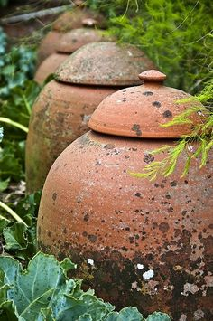 "Rhubarb cloches., though it at first glance i thought what great compost containers large ""lidded pots"" would make in a small garden."