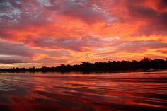 Amazônia tem praias de rios igarapés e vida selvagem