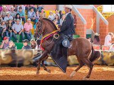 New: Horses in Colombia Colombian documentaries with English subtitles #English #Spanish #Documentary #Subtitles https://www.youtube.com/playlist?list=PL6SluuOkEBiHhkv6nrfHfRxSi8Kl4QO2d