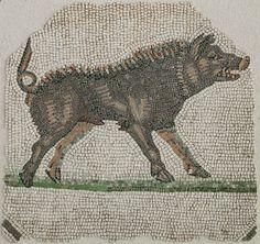 Musée gallo-romain de St-Romain-en-Gal - Maison d'Orphée - fragment de mosaïque représentant un sanglier - fin IIème siècle