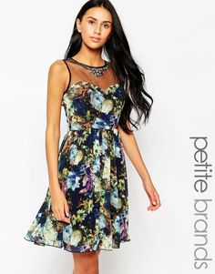 Little+Mistress+Petite+Skater+Dress+with+Mesh+Insert+and+Embellished+Detail