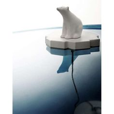 Loves this!  Polar bear drain stopper.  Although it's a bit sad, what with global warming.