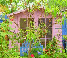 pink potting shed which I managed to fit in my small backgarden Meadow Garden, Pink Garden, Shed Interior, Container Flowers, Outdoor Storage, Container Gardening, Pink Color, Summerhouse Ideas, Outdoor Structures