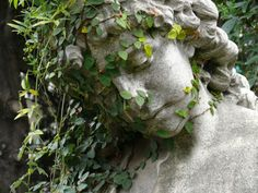Overgrown tomb statue, Buenos Aires