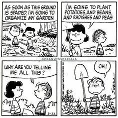 Hobbies And Games Info: 2402897670 Snoopy Cartoon, Snoopy Comics, Peanuts Cartoon, Peanuts Snoopy, Cartoon Pics, Linus Van Pelt, Lucy Van Pelt, Sally Brown, Funny Memes