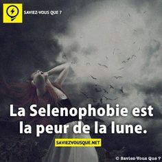 La Selenophobie est la peur de la lune. | Saviez Vous Que?