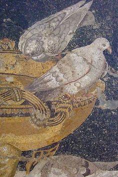 Mosaico romano que representa palomas bebiendo de una fuente de agua. Siglo I. Pompeya. Tal vez una copia del famoso mosaico de las palomas de Soso de Pérgamo, realizado para la Villa Adriana de Tívoli . Museo de Nápoles. https://www.flickr.com/photos/mharrsch/1618391354/