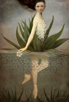 Waterlily by Catriz Welz-Stein aka Catrin Arno