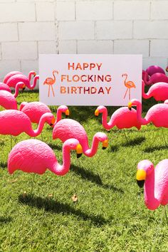 Happy Flocking Birthday with a Flamingo Flocking // Salty Canary Birthday Yard Signs, 40th Birthday Cards, Happy Birthday Funny, Adult Birthday Party, Birthday Gift For Him, Happy Birthday Images, Birthday Greetings, Birthday Wishes, Birthday Memes