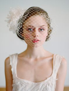 twigs & honey sweet birdcage veil