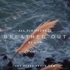 2 Timothy 3:16 #SheReadsTruth