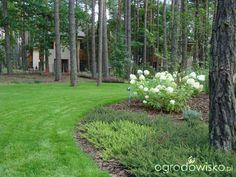 Ogród w lesie - strona 2 - Forum ogrodnicze - Ogrodowisko Exterior Design, Interior And Exterior, Backyard Fort, Forest Garden, Backyard Makeover, River House, Yard Landscaping, Landscape Architecture, Garden Design