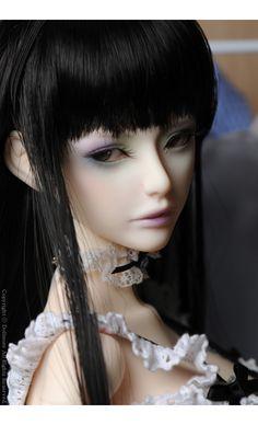 Glamor Zaoll - HBC Story ; Muse -
