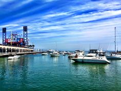 8-16-15, McCovey Cove outside of AT&T Park home of the San Francisco Giants. What a great shot. What a beautiful day.