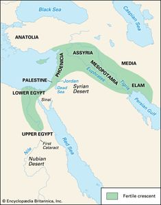 Euphrates River--------Babylon, the capital of Babylonia, an ancient empire of… Ancient Mesopotamia, Ancient Civilizations, Ancient Egypt, Ancient History, Bible Mapping, 6th Grade Social Studies, Cradle Of Civilization, Cultura General, Ancient Near East