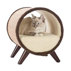 The Paws & Purrs Tubular Pet Bed provides a safe haven for your cat or dog. Made from durable bamboo, this tubular pet bed is lined with ultra-soft. Daisy Dog, Cat Climbing, Pet Furniture, Pet Mat, Cat Supplies, Animal Pillows, Dog Bed, Disney, Cover