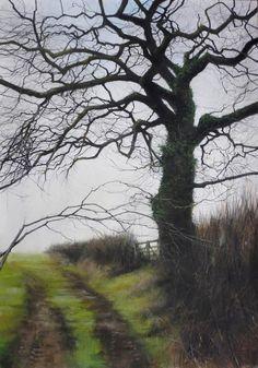 'Moorland Tree' by David Brammeld