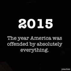 2015 the year in review #truth #funny #humor #comedy #2015