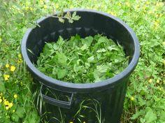 Jardinage au naturel : La fabrication des purins de plantes