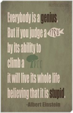 You can't judge a fish by its ability to climb trees.