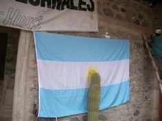 TUCUMAN EL PICHAO 2014