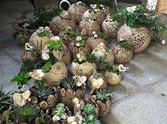Ceramic planters for the garden