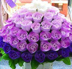 Awesome shades of purple roses! Purple Stuff, Purple Love, Purple Ombre, All Things Purple, Shades Of Purple, Deep Purple, Ombre Rose, Purple Nails, Light Purple