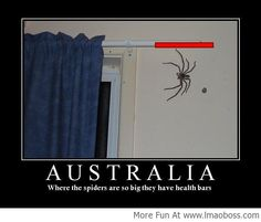 Meanwhile in Australia!