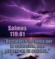 """- Salmos 119:81 - """"Desfallece mi alma por tu salvación, mas espero en tu palabra."""""""