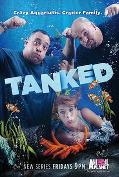 Tanked: the Game is the official app of the hit Animal Planet series, Tanked! In this app, you can build your very own aquarium just like Brett Raymer and Wayde King, the stars of Tanked! Discovery Channel, 2011 Movies, Good Movies, Best Tv Shows, Favorite Tv Shows, Favorite Things, Movies Showing, Movies And Tv Shows, Cool Fish Tanks