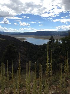 Northern NM - my view from above Eagle Nest Lake