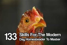 133 Skills For The Modern Day Homesteader To Master