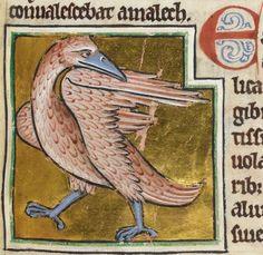 British Library Royal MS 12 C XIX (c1200-c1210) f52r