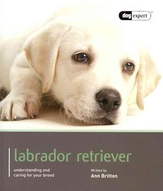 This dog expert guide gives you all the information you will need to provide your Labrador with the care and training that will enable him to lead a happy and fulfilling life. Written by experts, this