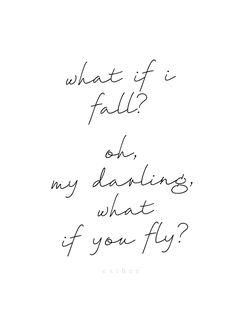 fly, little bird, fly