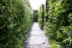 A-Mazing Vertical Garden | Da Nang City, Vietnam | TA LANDSCAPE ARCHITECTURE  green wall, maze, landscape, architecture, vietnam, lush, green, garden