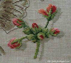 Flower/Rose