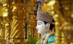 શ્રીહરિએ સદ્. મુક્તાનંદ સ્વામીને પંચવિષયરૂપી રોગ ટાળવાની દવા બતાવી   Prasang   anadimukta.org