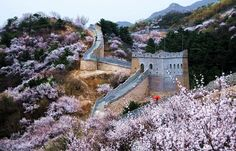 Great Wall of China, Beijing, China - #Spring to the Great Wall of China.  https://twitter.com/Beautifulgx