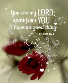 Psalm 16:2 (KJV) O my soul, thou hast said unto the LORD, Thou art my Lord: my goodness extendeth not to thee;