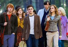 Ron Weasley, Ginny Weasley, Harry Potter, Neville Longbottom, Hermione Granger, and Luna Lovegood